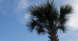 Things to Do in and Around Georgia